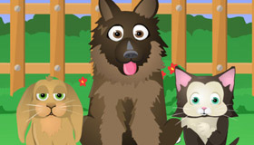 gratis : ¿Cuál es tu mascota ideal?