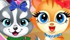 gratis : Salón de belleza de animales