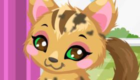 gratis : Cuidar a un gato del refugio de mascotas - 11