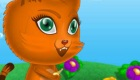 gratis : Un gato en un laberinto
