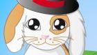 vestir : Juego de mascota conejo - 4