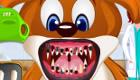 gratis : Dentista de animales