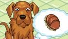 gratis : Peluquería de perros