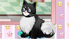 gratis : Vestir a un gato