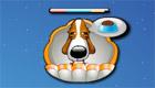 gratis : Juego de Pets Poet Club game