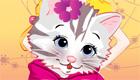 gratis : El gatito