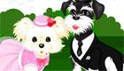 vestir : Una boda de perros