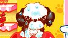 gratis : Juego de aseo para perros