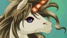 Juego de vestir de unicornio