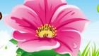 Juego de decoración de flores