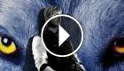 David Guetta feat. Sia - She Wolf (Falling to Pieces)