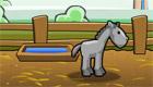 Criar un caballo