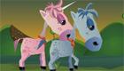 Equitación para chicas