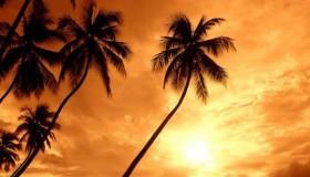 ¿Qué sueñas con hacer en las vacaciones de verano?