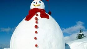 Un muñeco de nieve por un código VIP en HiDolls