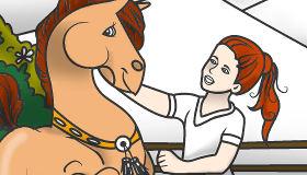 Colorear un caballo