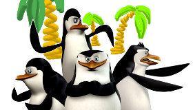 Dibujos de pingüinos