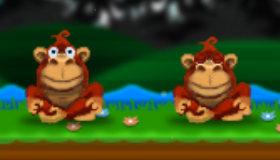 Gorilas que lanzan cocos