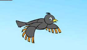 Pájaro nones