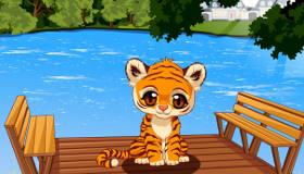 Tigres bebés